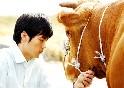 기축년 새해, 한국영화속 소(牛)의 모습은?